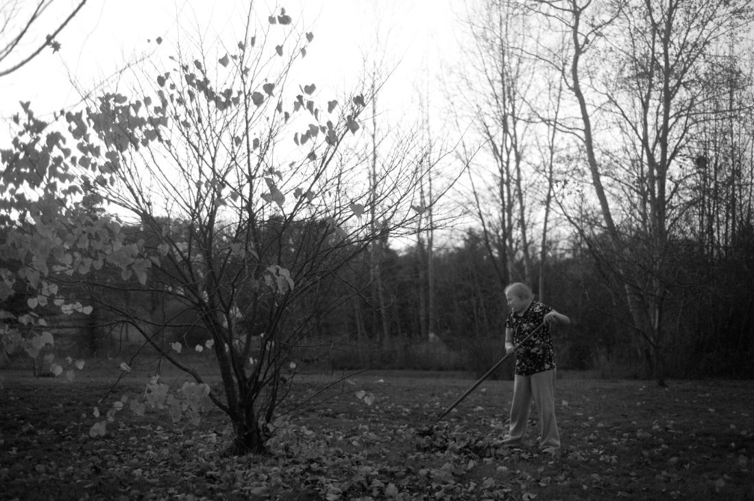 Allie rakes leaves outside her grandmother's house on Thursday, October 25, 2012.